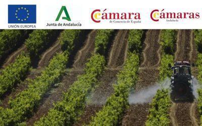 Estudio sobre la transformación digital en el sector agroalimentario