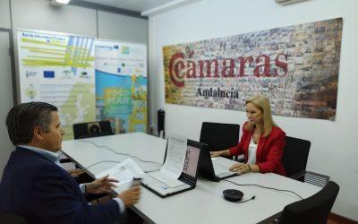 Éxito del taller online sobre neuromarketing y ventas