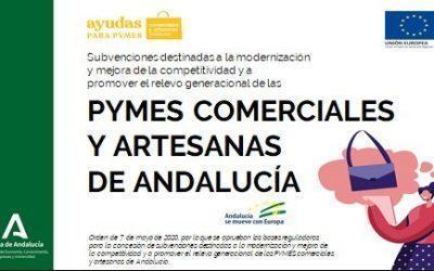 Gran éxito de convocatoria y difusión de la presentación de las subvenciones y ayudas para la modernización y mejora de la competitividad del comercio