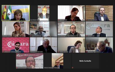 Reunión de la Delegada del Gobierno en Andalucía con el Consejo Andaluz de Cámaras de Comercio