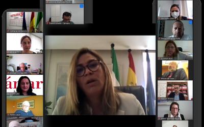 La Directora General de Calidad, Innovación y Fomento del Turismo, Ana García López, explica a la Comisión de Turismo de Cámaras Andalucía las ayudas convocadas para el sector.